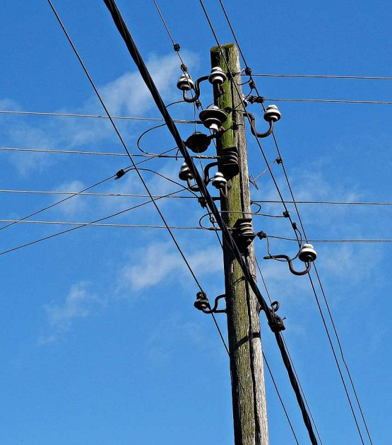 wood poles, telephone poles for sale